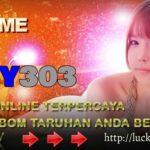 Lucky303.casino Bandar Bola Online Promo Bonus Terbesar